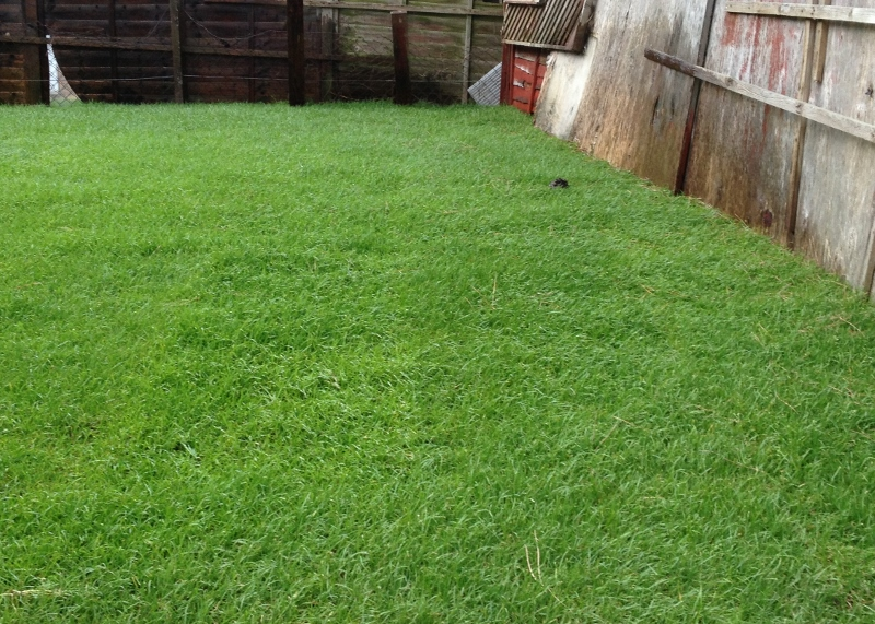 Order Gardening and Soft Landscaping