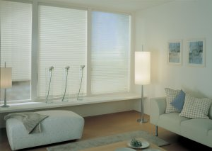 Order Fitting Blinds