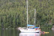 Order Bluewater Adventures - Orcas & Totems Cruise