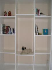 Book Case with White Painted