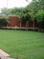A family garden