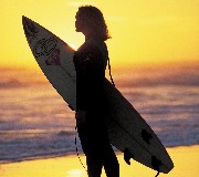 Sydney Surf Adventure tour