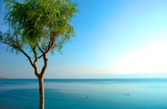 The Dead Sea holidays