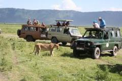 The Complete Kenya Tour: Beach & Safari