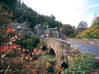 Village Life In Wales Tours