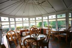 Bant's Conservatory