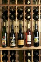 Wine Tasting and Whale Sharks tour