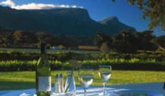 Food and wine holidays