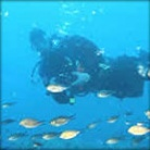Sailing & Diving holidays in Tunisia