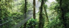 Costa Rica Adventure tour