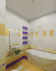 Bathrooms repair services