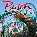 Busch Gardens tour